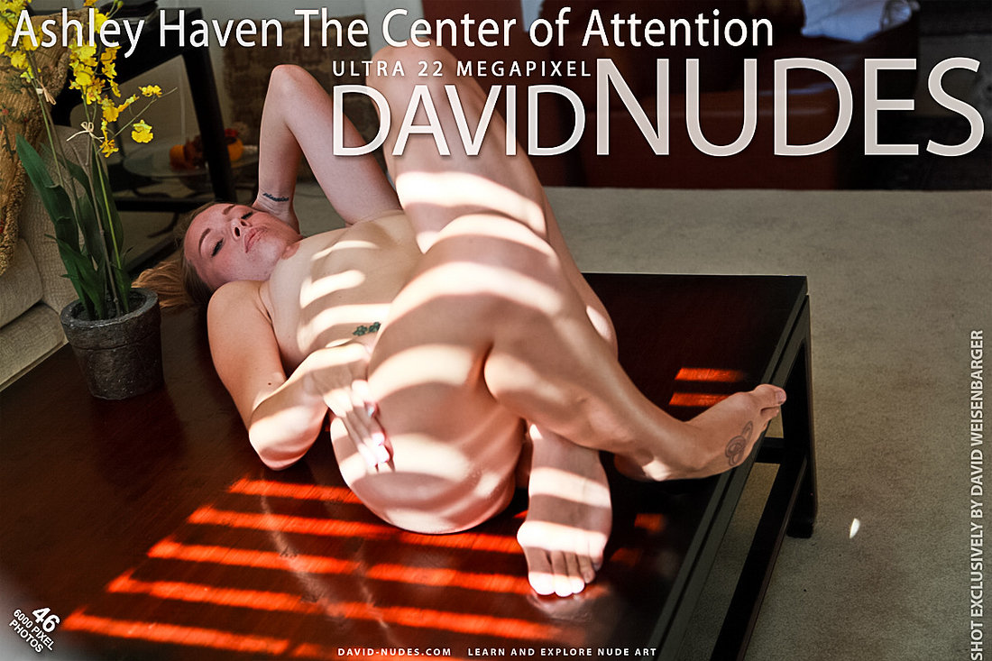 Ashley Haven The Center of Attention David-Nudes