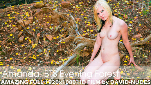 Play  Amanda presents Spotted! Naked Teen in Evening Forest