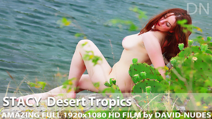 Stacy Desert Tropics