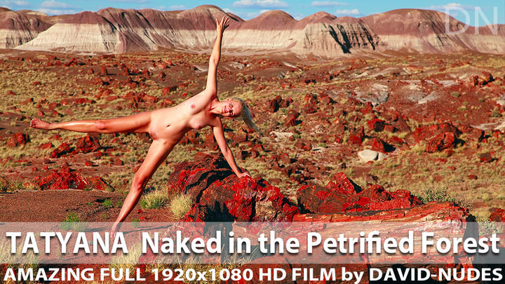 Tatyana Naked in the Petrified Forest