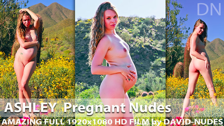 Ashley Pregnant Nudes